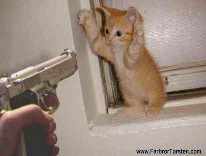 Roliga bilder på katter och hundar. Här lite hotfullt skämt.